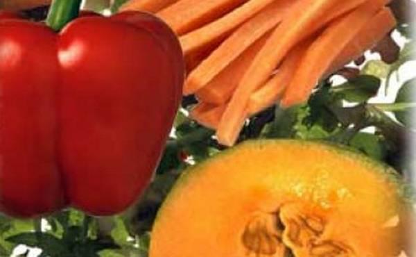 Nedostatak vitamina A (avitaminoza) dovodi do oboljenja očiju