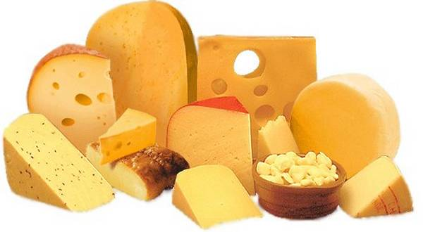 Mlečni proizvodi u ishrani ljudi