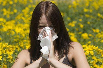 Alergija 56