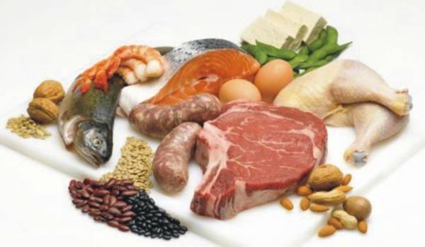 Hrana životinjskog porekla