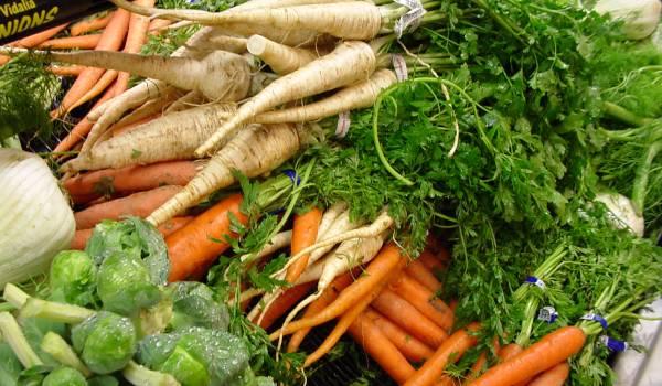 Korenasto povrće hrana