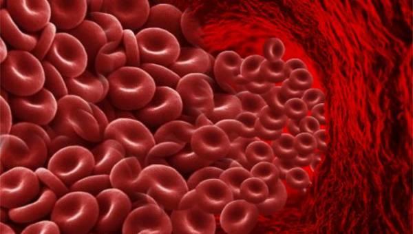 crvena krvna zrnca