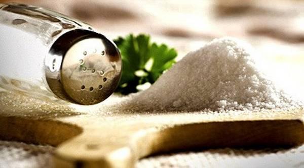 nedostatak soli u organizmu